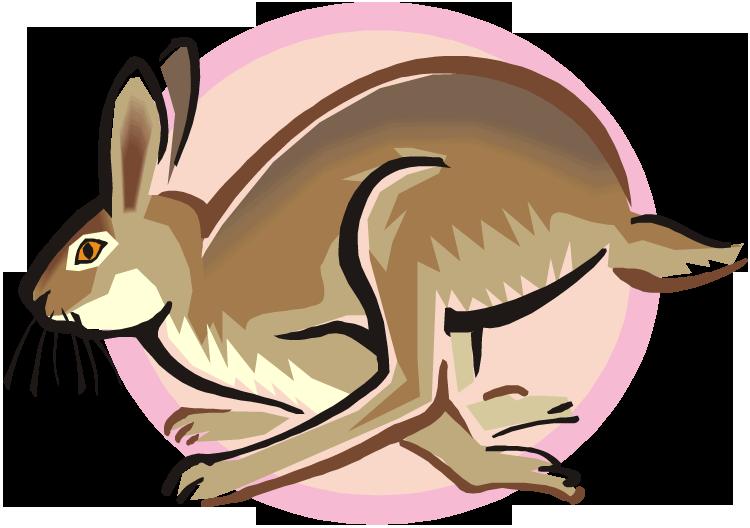 Bunny baseball clipart png freeuse stock Free Rabbit Clipart png freeuse stock