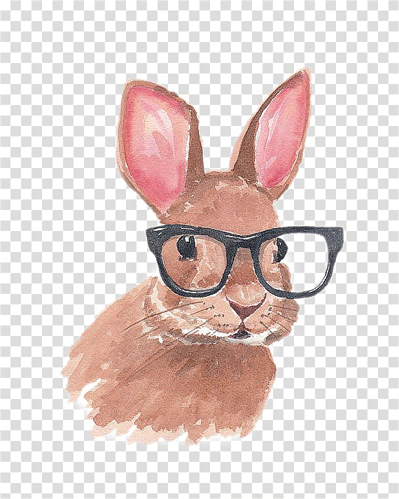 Bunny with sunglasses clipart png royalty free download Rabbit wearing eyeglasses painting illustration, Lionhead rabbit ... png royalty free download
