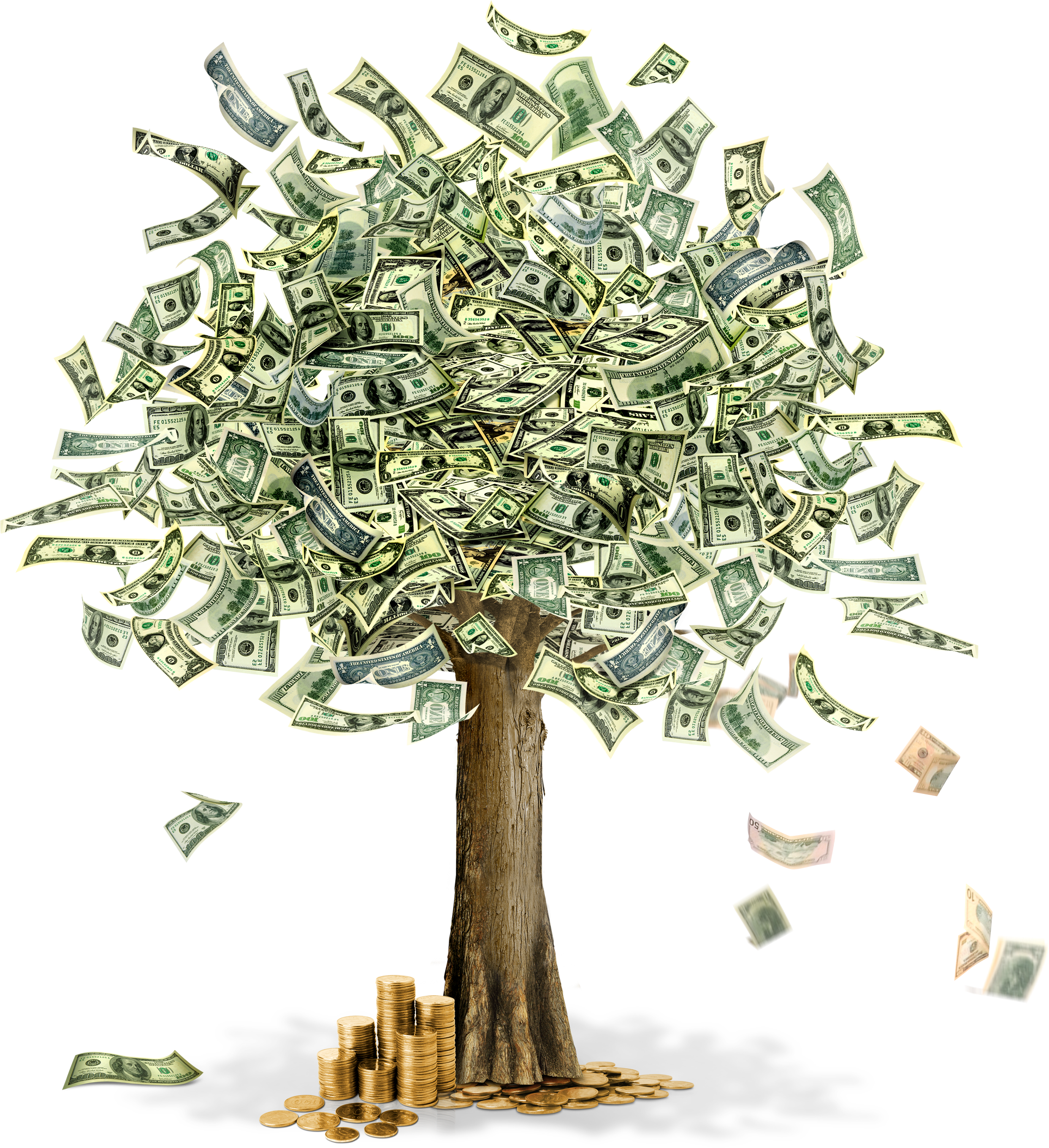 Money tree free clipart copyright free clip art black and white download Money Tree Drawing at GetDrawings.com | Free for personal use Money ... clip art black and white download
