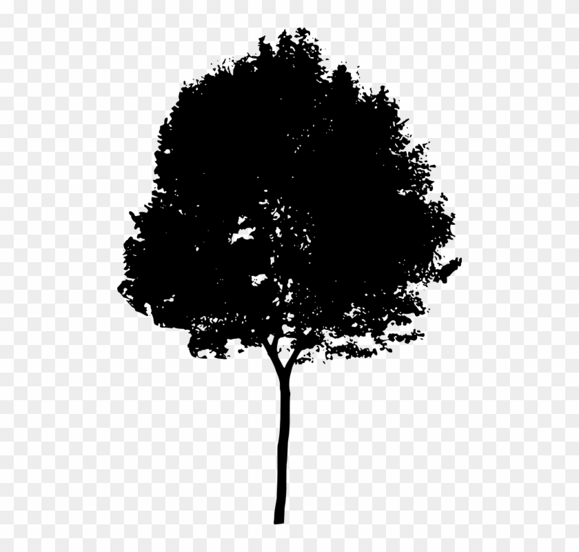 Bush silhouette clipart picture download Shrub Bushes Clipart Old Tree - Tree Silhouette Png, Transparent Png ... picture download
