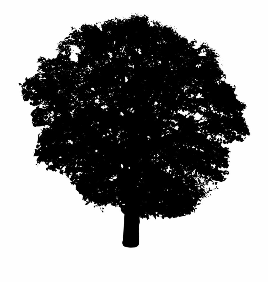 Bush silhouette clipart jpg transparent Tree Free Stock - Bush Silhouette Transparent, Transparent Png ... jpg transparent