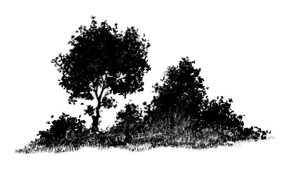Bush silhouette clipart clip freeuse download Bush Silhouette Png Vector, Clipart, PSD - peoplepng.com clip freeuse download