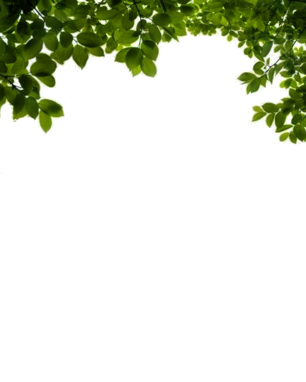 Tree vine clipart picture freeuse stock Bushes PNG images free download, bush PNG picture freeuse stock
