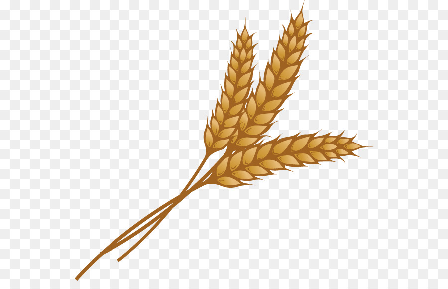 Bushel of wheat clipart vector freeuse library Free Grain Clipart bushel wheat, Download Free Clip Art on Owips.com vector freeuse library