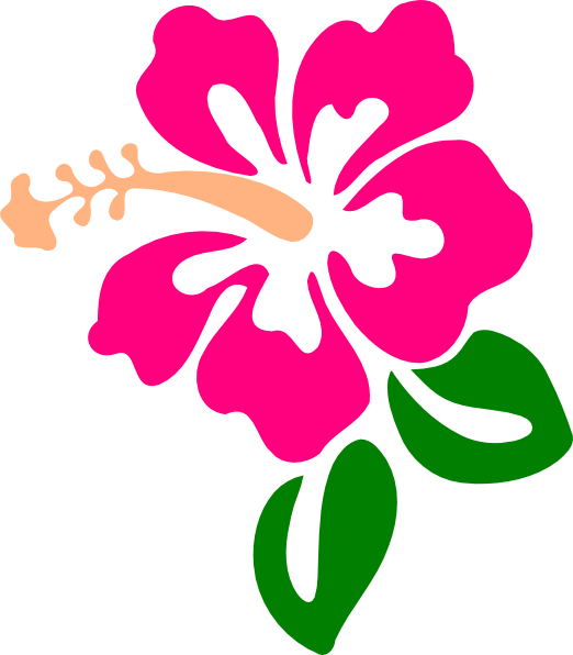 Buttercup flower clipart png transparent Hibiscus 9 Clip Art at Clker.com - vector clip art online, royalty ... png transparent