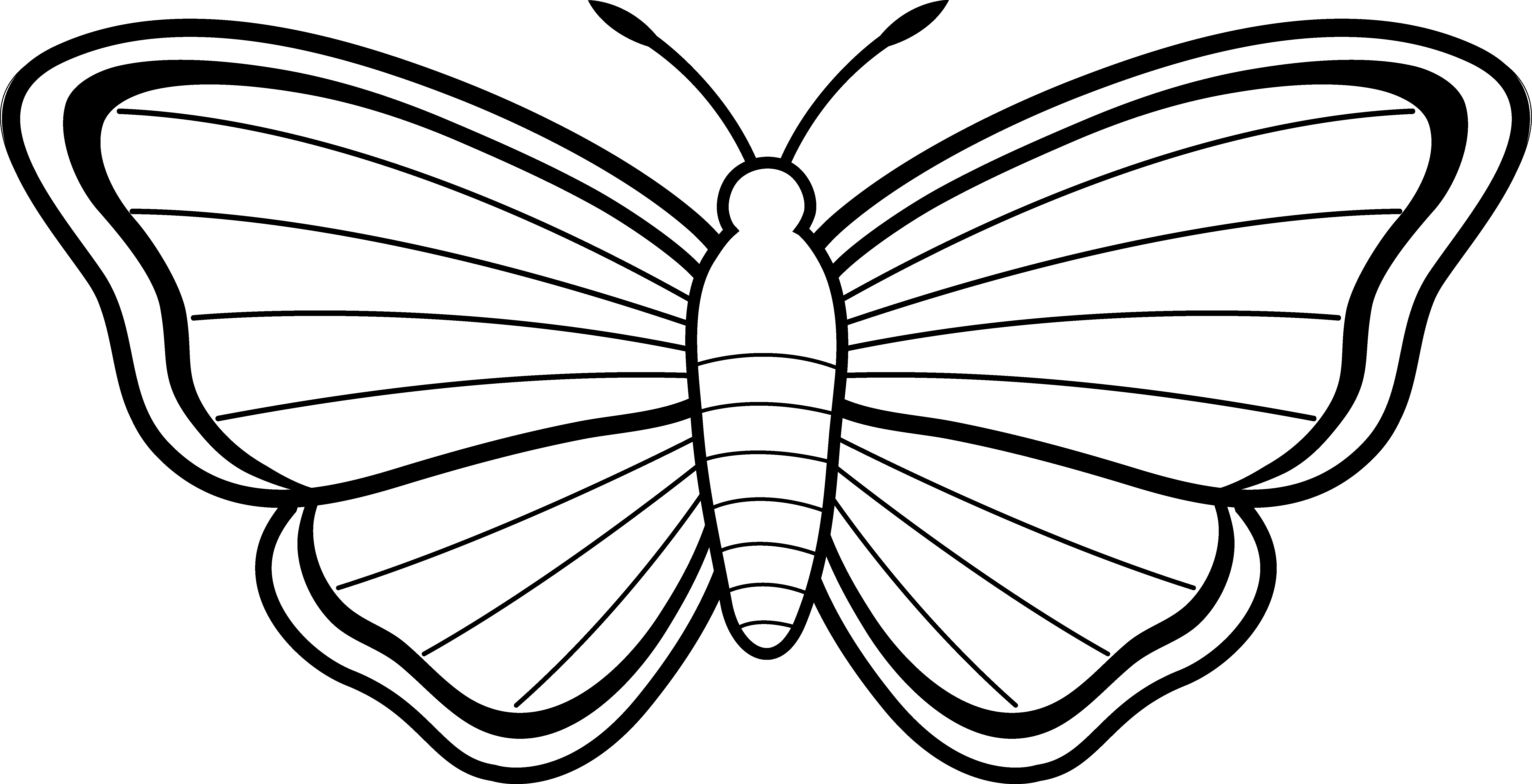 Pappillon clipart black and white cartoon outline clip library library Free Butterfly Images Black And White, Download Free Clip Art, Free ... clip library library