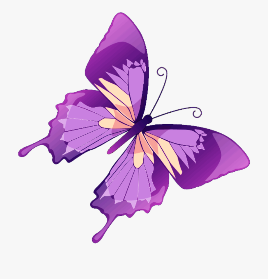 Butterflies day clipart image free stock butterfly #mariposa #diurna #day #diurnal #spring - Butterflies And ... image free stock