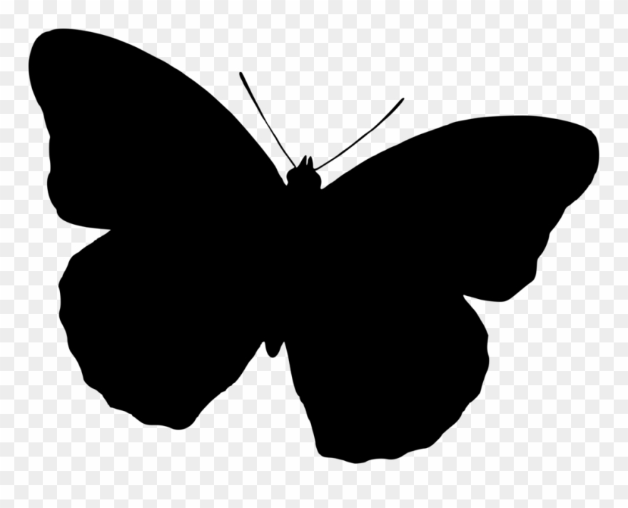 Butterflies silhouette clipart free jpg black and white library Butterfly Silhouette Drawing Black And White Free Commercial ... jpg black and white library