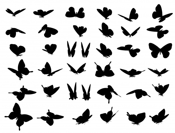 Butterflies silhouette clipart free vector freeuse library Butterfly Silhouette Clipart Set Free Stock Photo - Public Domain ... vector freeuse library