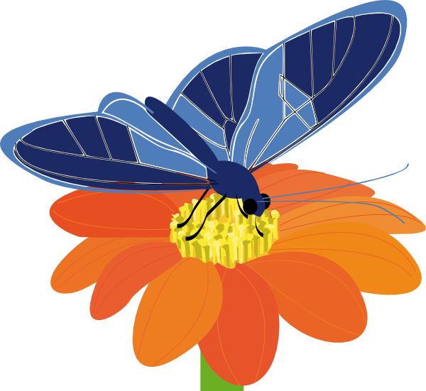 Butterfly on flower clipart stock Blue Butterfly With Flower Clip Art at Clker.com - vector clip art ... stock