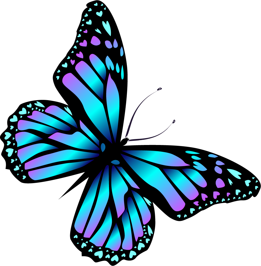 Butterfly body only no wings clipart
