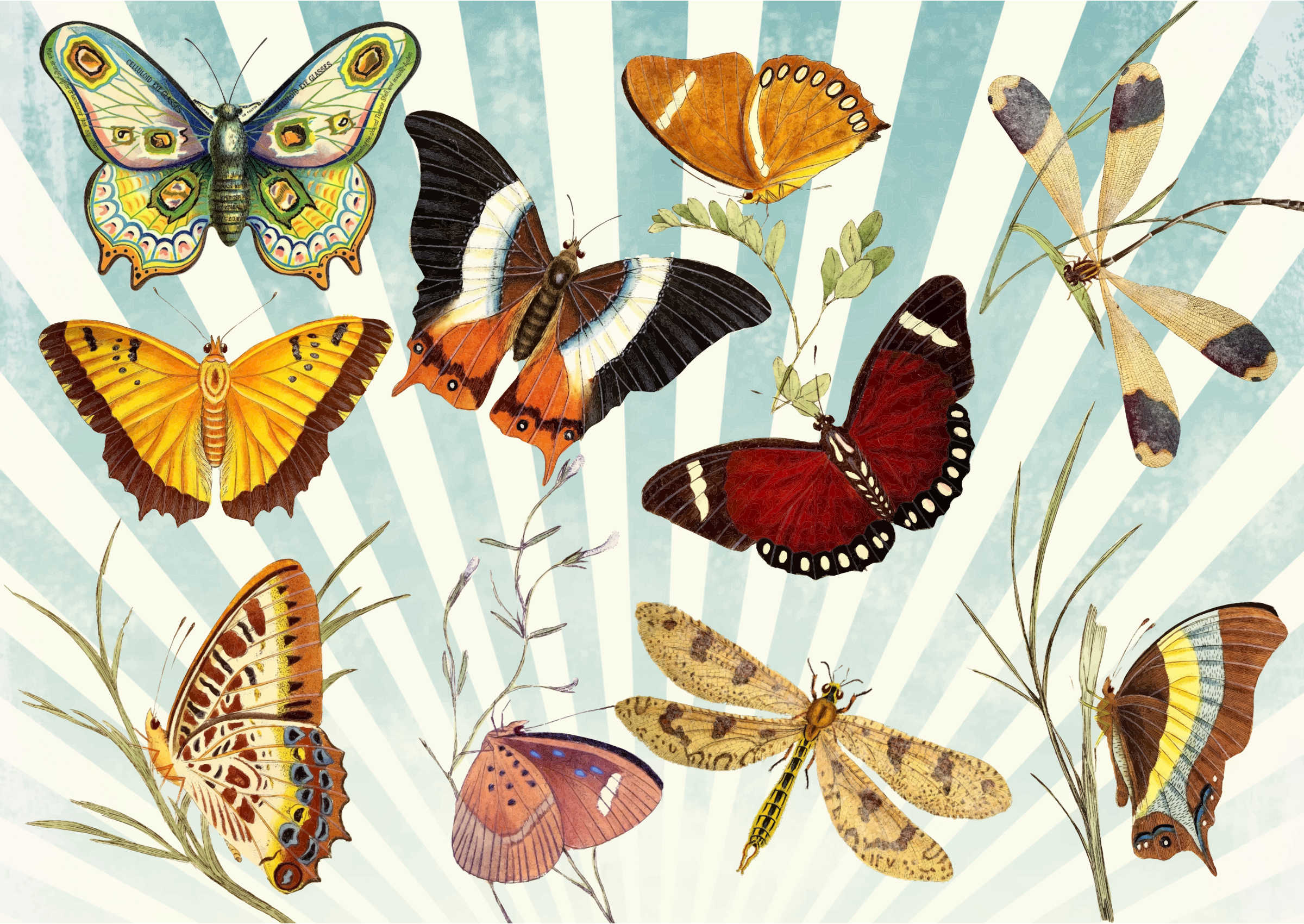 Butterfly clipart cross clip library stock Clipart - Butterflies And Dragonflies Ultra High Detail clip library stock