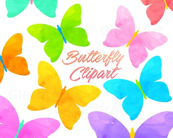 Butterfly clipart for commercial use banner library stock Butterfly Clipart, Butterflies Clipart, Spring Clipart, for ... banner library stock