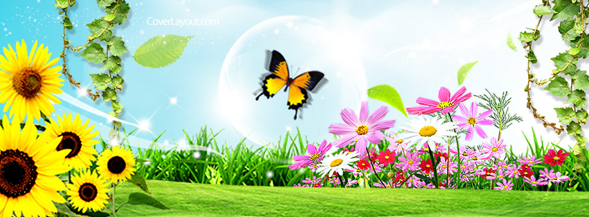 Butterfly clipart for facebook cover image freeuse Butterfly clipart for facebook cover - ClipartFest image freeuse