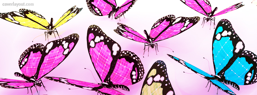 Butterfly clipart for facebook cover png black and white stock 66 best ideas about Butterflies and Ladybugs Facebook Covers on ... png black and white stock