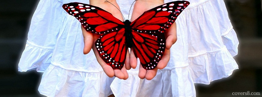 Butterfly clipart for facebook cover picture freeuse library Butterfly clipart for facebook cover - ClipartFox picture freeuse library