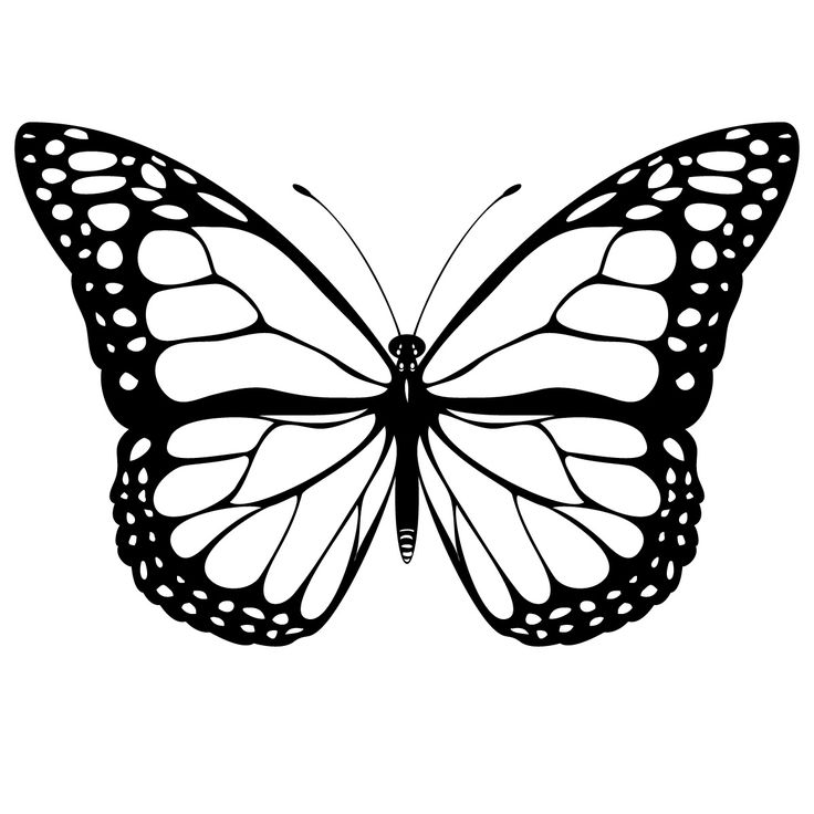 Butterfly clipart free black and white jpg royalty free Free Butterfly Images Black And White, Download Free Clip Art, Free ... jpg royalty free