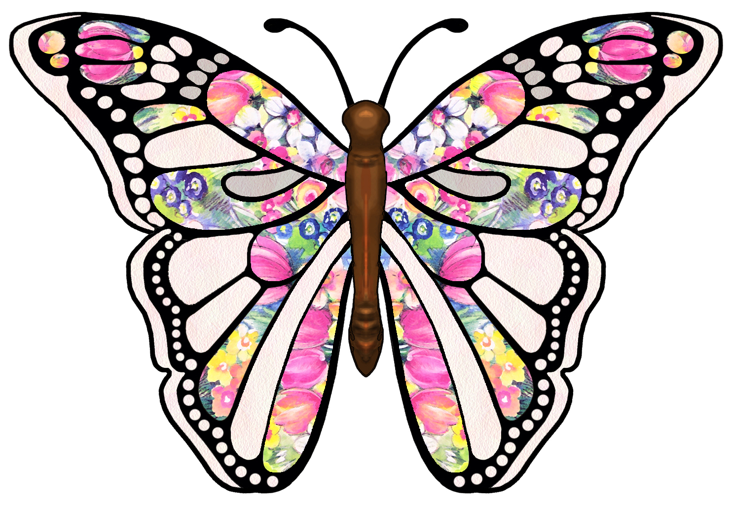 Butterfly clipart jpg freeuse Free Images For Butterflies, Download Free Clip Art, Free Clip Art ... freeuse