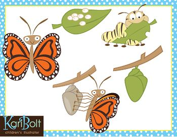 Butterfly cycle clipart