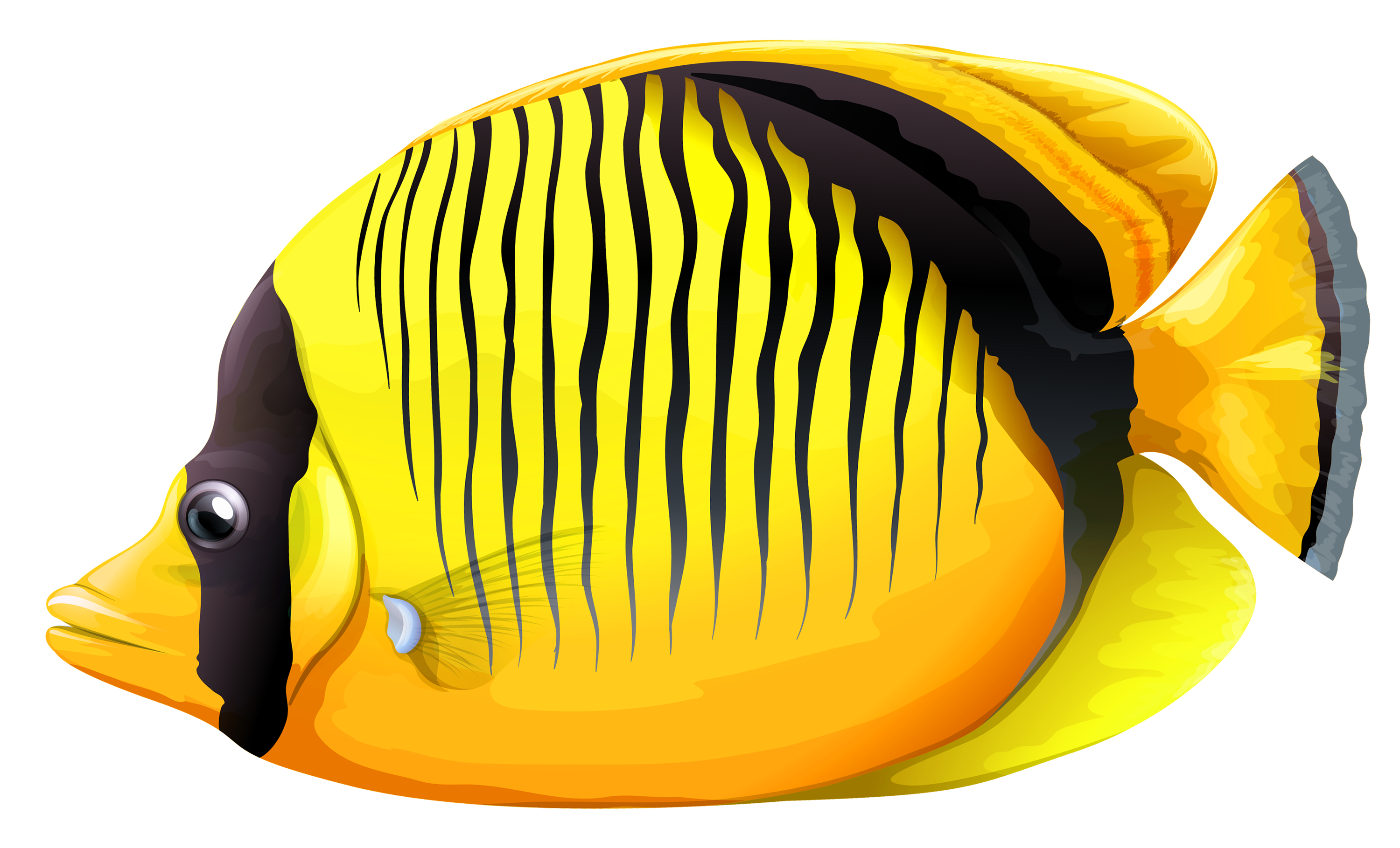 Purple fish and worm clipart picture black and white library Yellow Butterfly Fish PNG Clipart - Best WEB Clipart picture black and white library