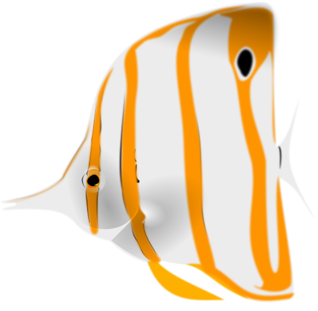 Butterfly fish clipart image free download Copperband butterflyfish clipart - /animals/aquatic/fish/B ... image free download