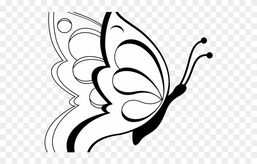 Butterfly flying clipart black and white graphic download Fly Clipart Transparent - Butterfly Images For Drawing With Colour ... graphic download