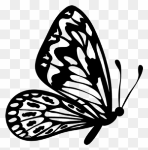 Butterfly flying clipart black and white png library library Download Free png Flying Butterfly Outline Clipart Black And White ... png library library