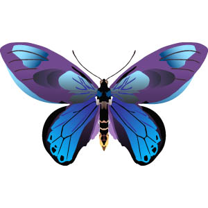 Butterfly images free clipart graphic Butterfly Clipart | Clipart Panda - Free Clipart Images graphic