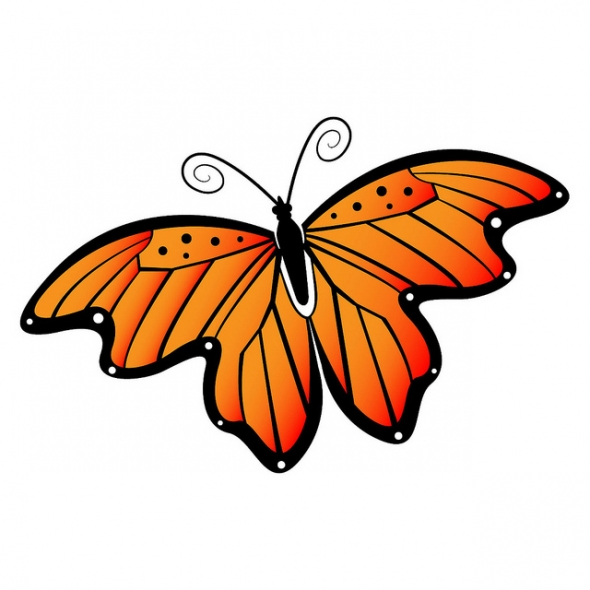 Butterfly images free clipart banner royalty free Butterfly Clip Art Free & Butterfly Clip Art Clip Art Images ... banner royalty free