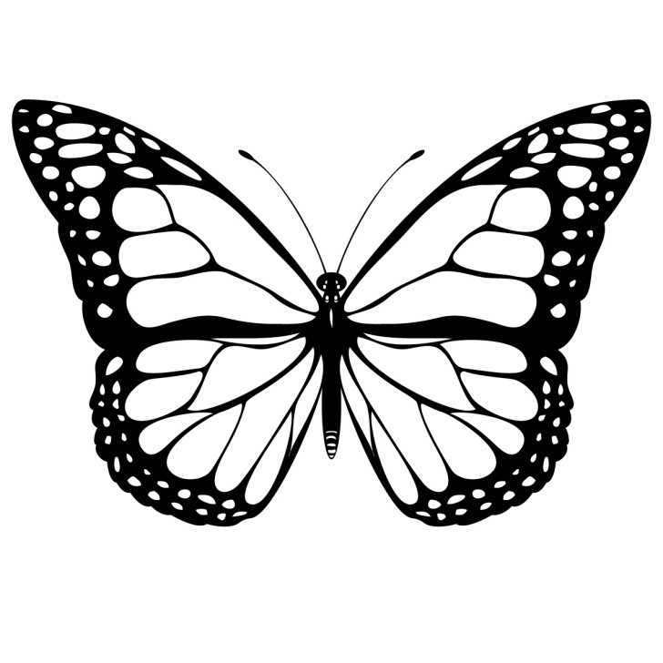 Butterfly images free clipart image free Butterfly Clip Art Free & Butterfly Clip Art Clip Art Images ... image free