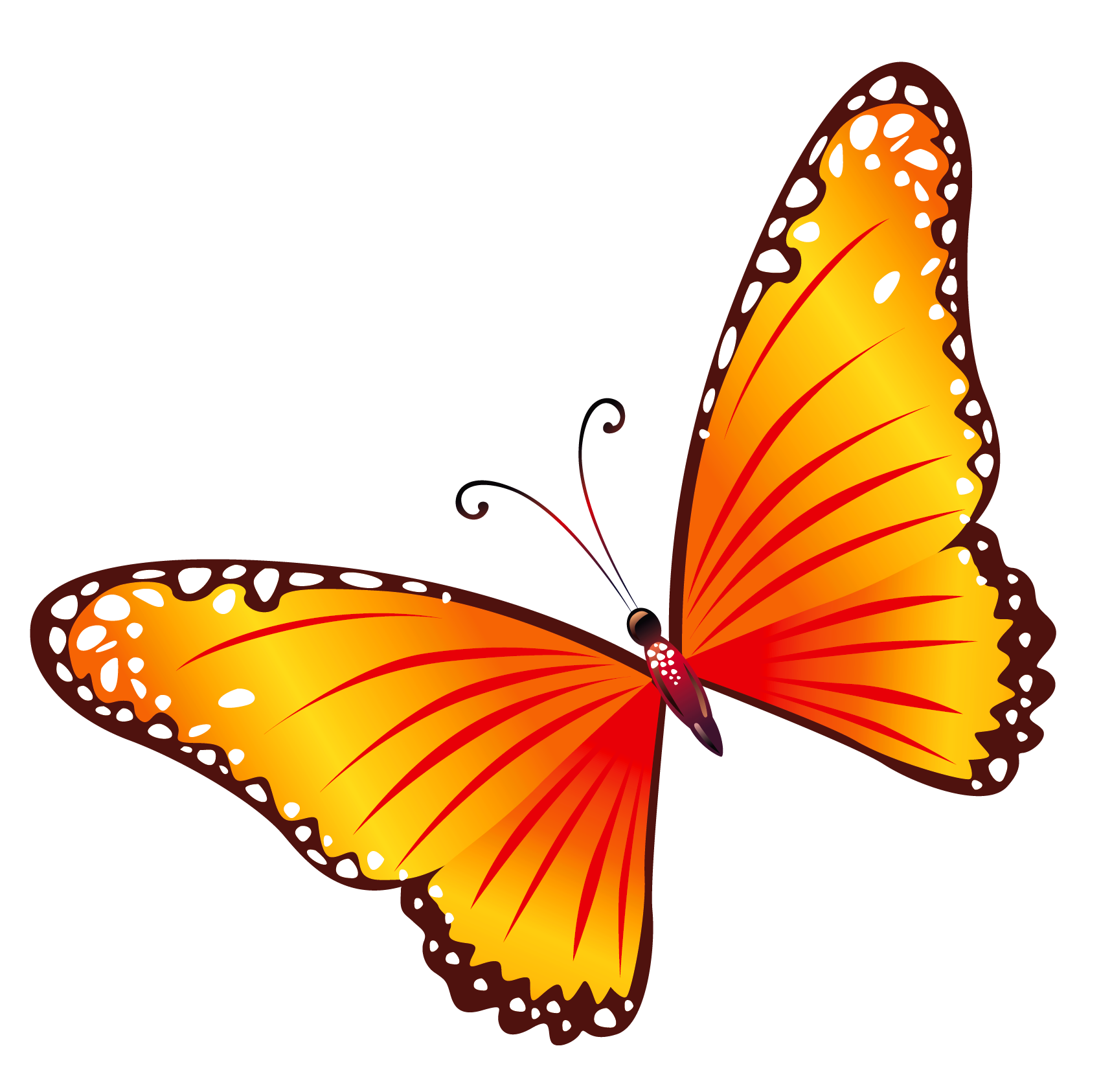 Orange book clipart banner royalty free library Transparent Orange Butterfly PNG Clipart | all things beautiful ... banner royalty free library