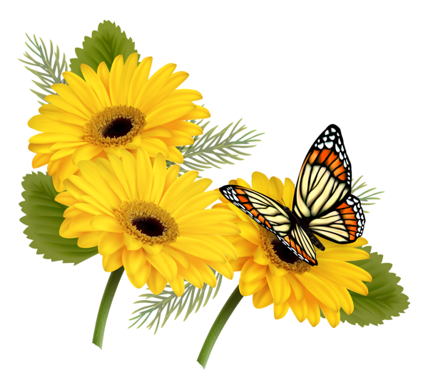 Butterfly on flower clipart clipart transparent download Yellow Gerberas with Butterfly PNG Clipart | mutfak dekopaj ... clipart transparent download