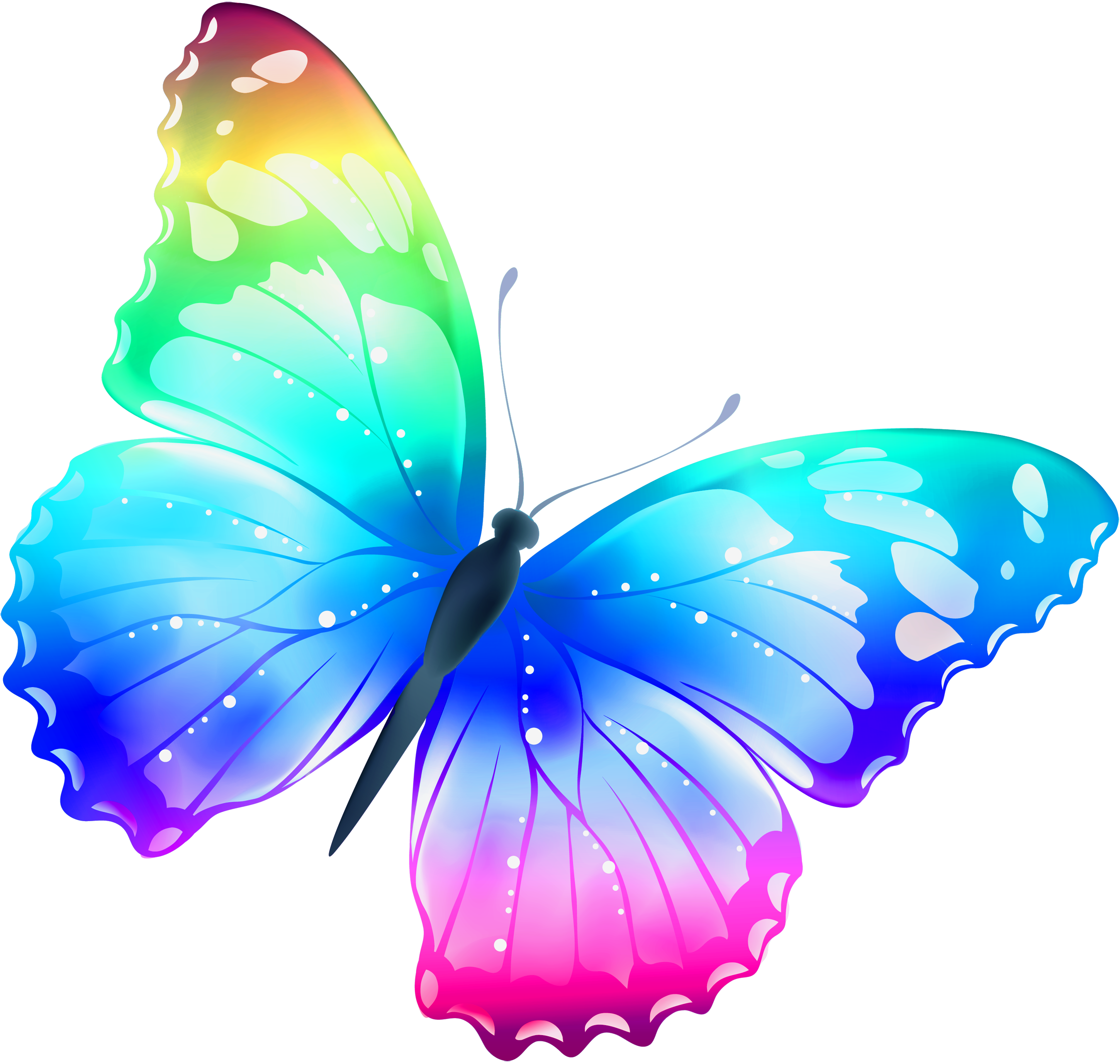 Butterfly pictures free clipart clipart black and white Clipart for butterflies clipart images gallery for free download ... clipart black and white