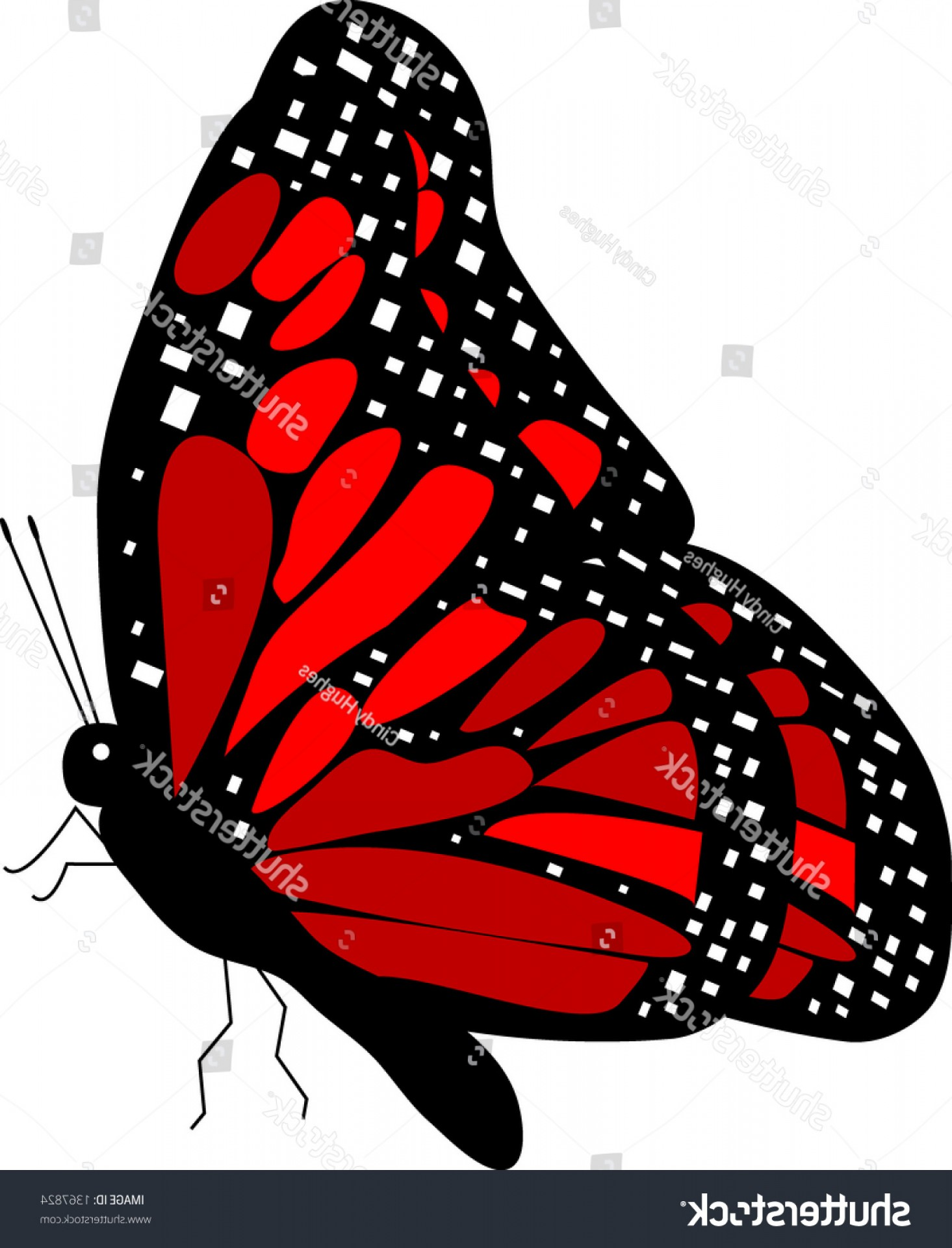 Butterfly side view clipart picture black and white download Side View Red Monarch Butterfly Vector | SOIDERGI picture black and white download