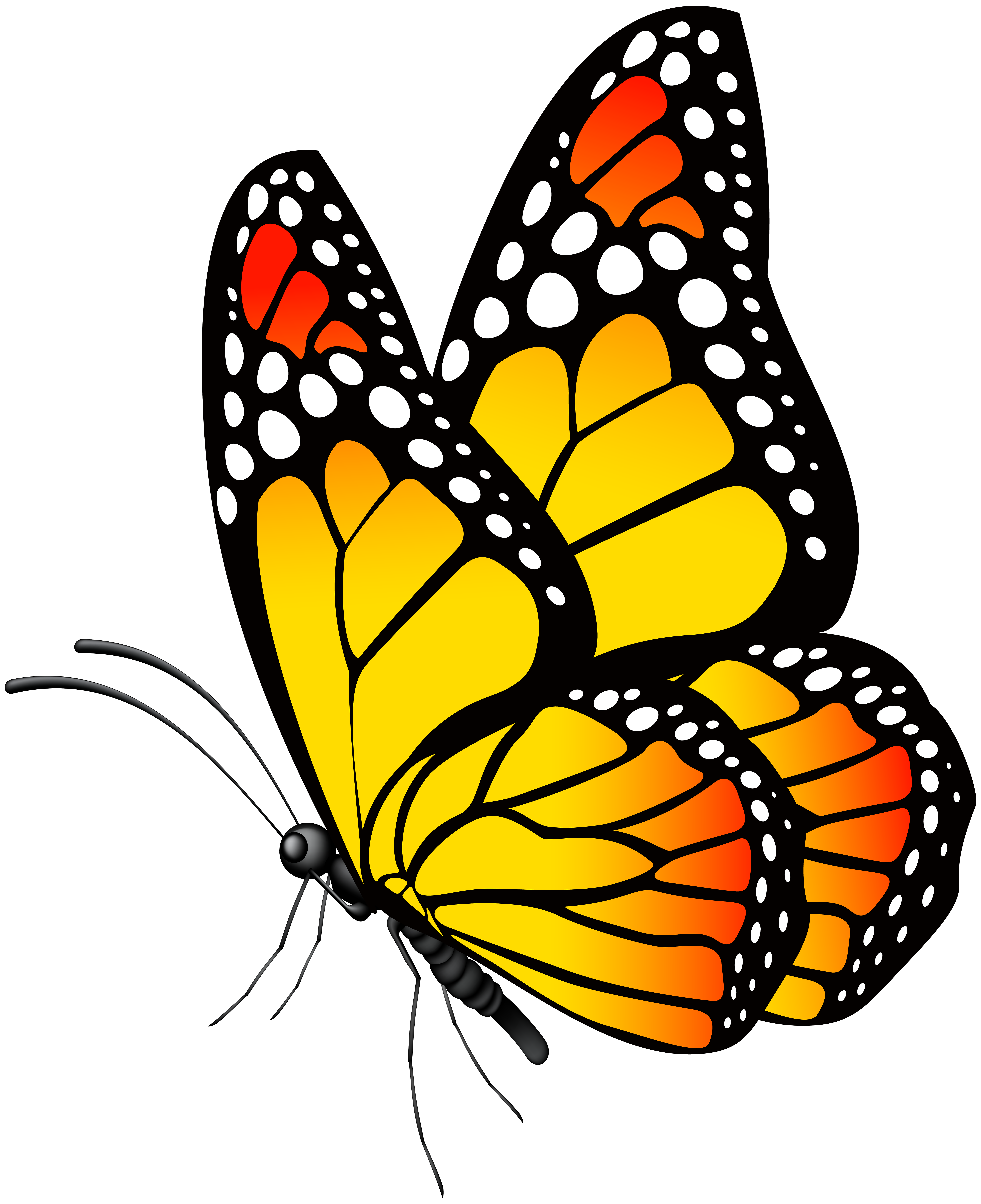Butterfly yellow clipart png black and white Butterfly Yellow PNG Clip Art Image | Gallery Yopriceville - High ... png black and white