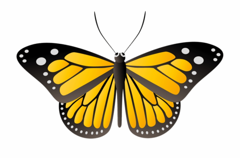 Butterfly yellow clipart vector download Free Png Download Butterfly Yellow Clipart Png Photo - Butterfly ... vector download