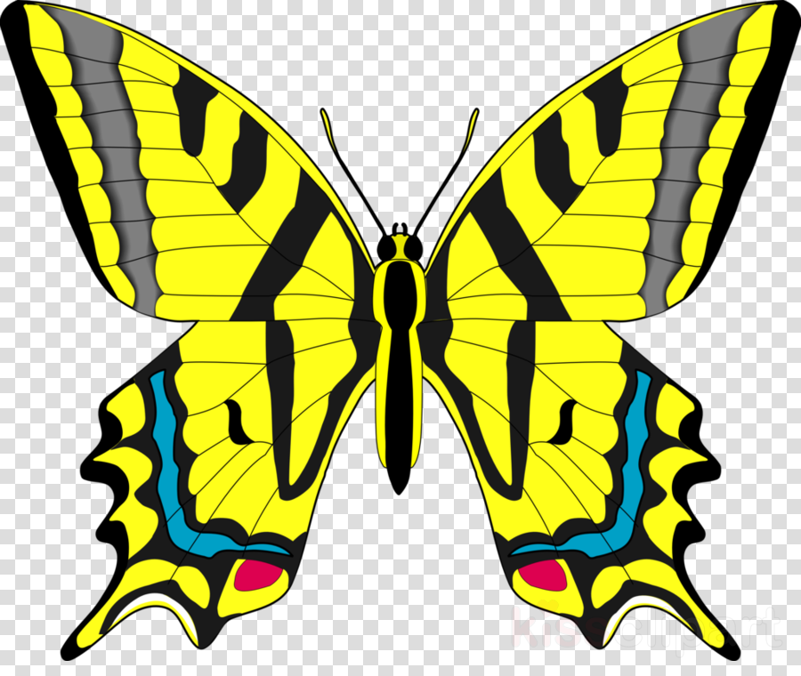 Butterfly yellow clipart clipart free library World Cartoon clipart - Butterfly, Yellow, Wing, transparent clip art clipart free library