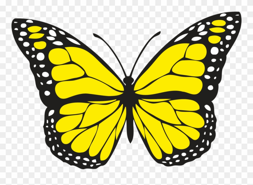 Butterfly yellow clipart banner royalty free library Spiritual Meaning Of Yellow Butterflies - Butterfly Clip Art Yellow ... banner royalty free library