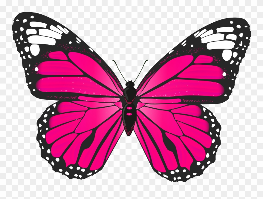 Butterliy clipart picture library stock Butterfly Clip Art - Pink Butterfly Clipart Png Transparent Png ... picture library stock