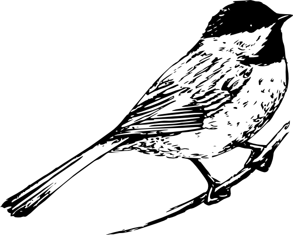 B&w bird clipart jpg royalty free library black and white pictures of birds | Bird clip art - vector clip art ... jpg royalty free library