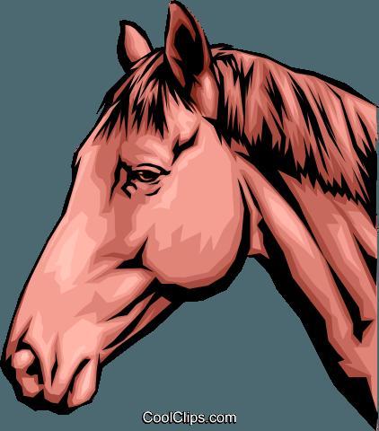 Cabeca de cavalo clipart picture stock cabeça de cavalo livre de direitos Vetores Clip Art ilustração ... picture stock