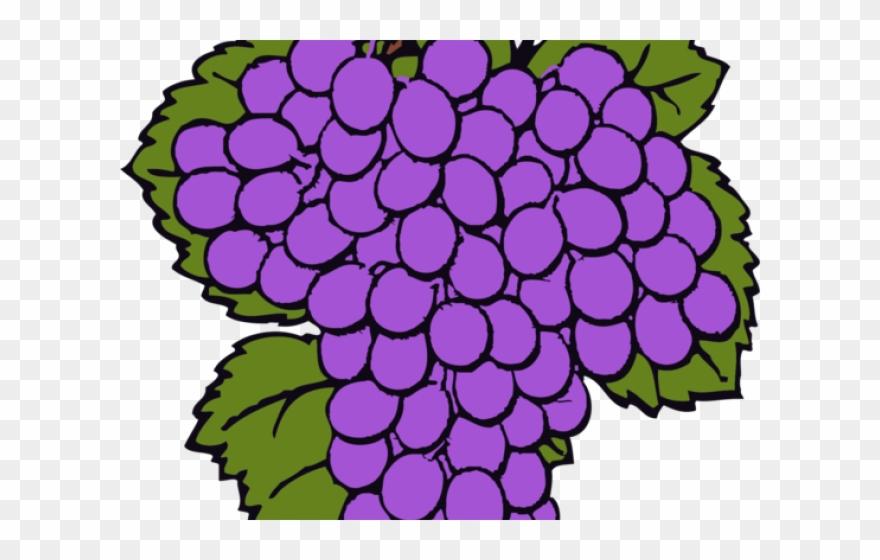 Cachos clipart clip freeuse library Grape Clipart Name - Desenho Cachos De Uvas - Png Download - Clipart ... clip freeuse library