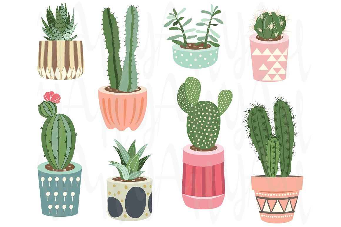 Cactus drawing clipart png transparent stock Cactus Collections #beautifully#rendered#separate#receive ... png transparent stock