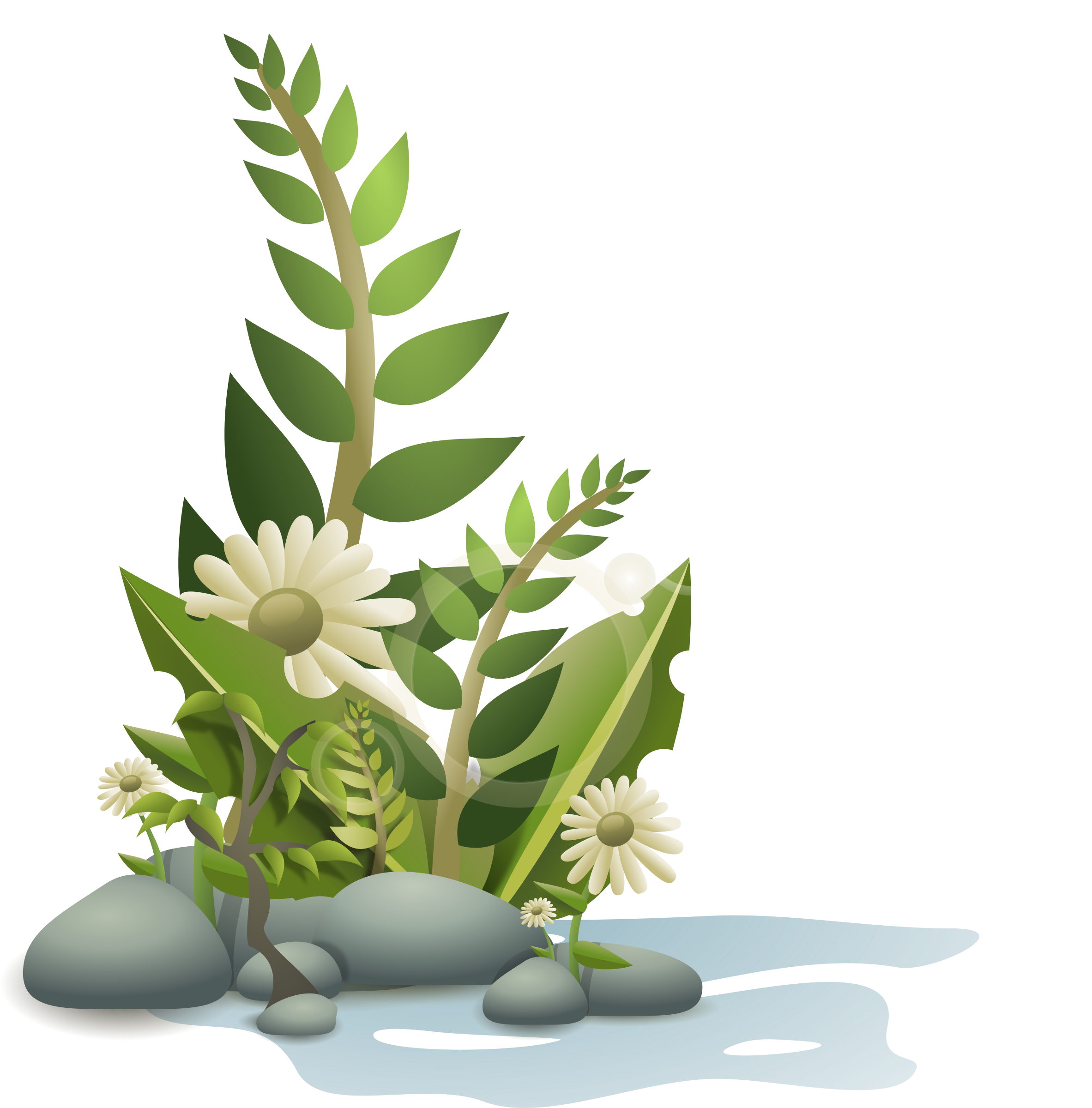 Flower plant clipart image transparent library Clipart - plants pebbles and flowers image transparent library