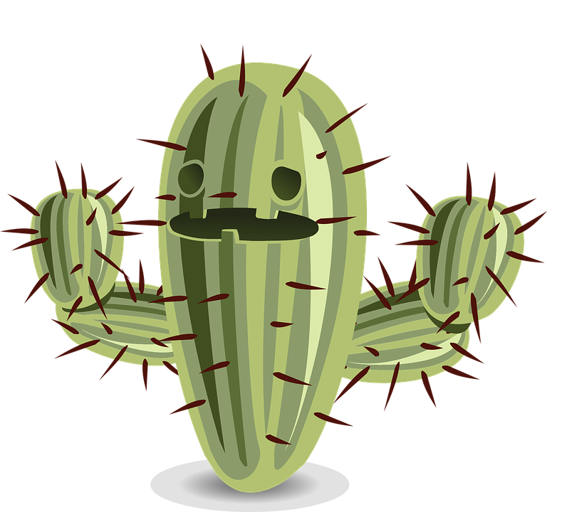 Cactus flower clipart graphic stock Cactus Transparent PNG Pictures - Free Icons and PNG Backgrounds graphic stock