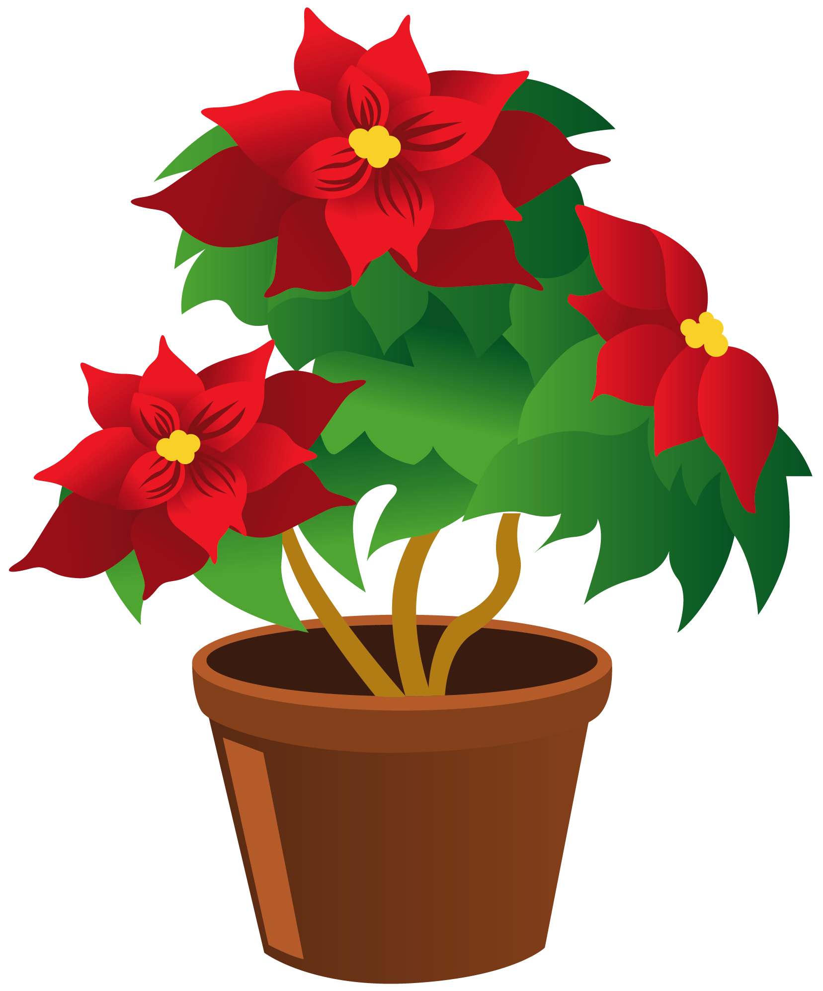 Growing flower clipart svg freeuse stock Poinsettia_Pot_PNG_Clipart | ✿° my garden valley ° ✿ | Pinterest ... svg freeuse stock