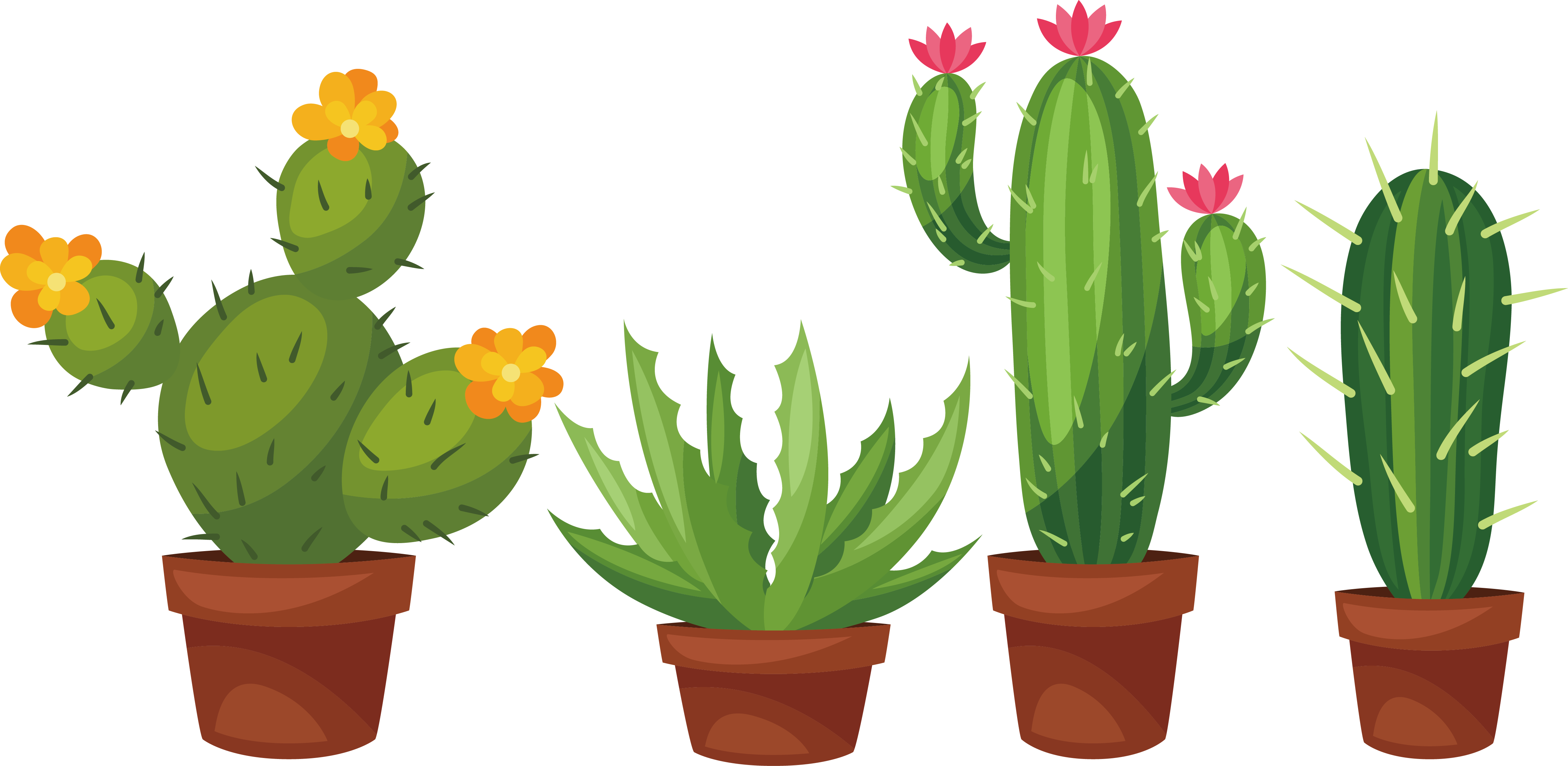 Cactus with flower clipart clipart freeuse Succulent plant Cactaceae Prickly pear Clip art - Hand-painted palm ... clipart freeuse