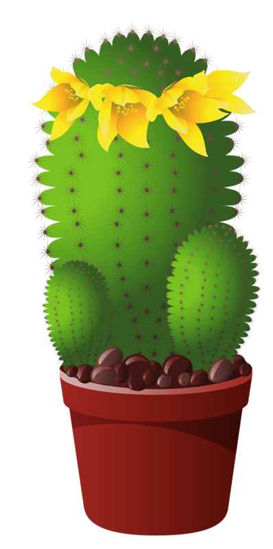 Cactus with flower clipart clipart library download Objects, Elements and Food 5.png | Clip art, Flower clipart and ... clipart library download