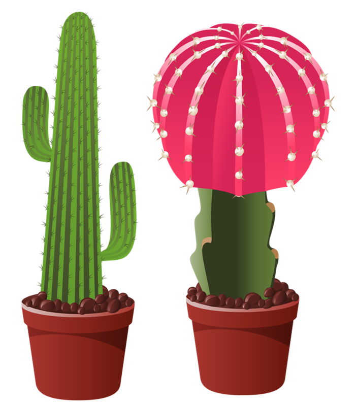Cactus with flower clipart banner freeuse library Picture 6.0 | ✿° my garden valley ° ✿ | Pinterest | Cacti, Clip ... banner freeuse library