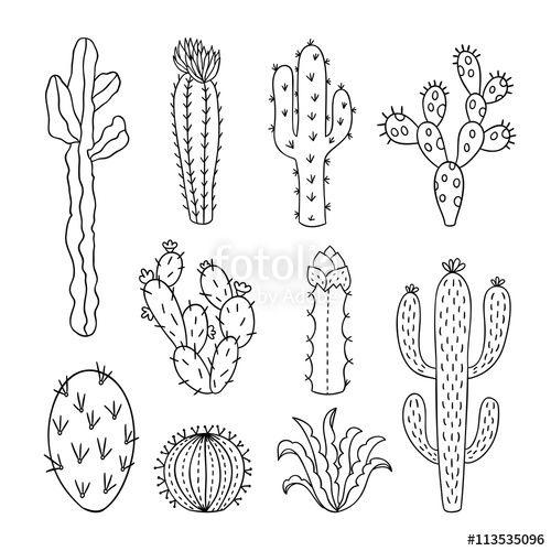 Black succulent clipart jpg library Cactus outline vector illustrations. Succulents plants doodle ... jpg library